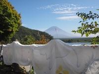 精進湖からの富士山♪