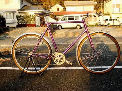 自転車の 自転車 フレームバッグ 大容量 : 浜松自転車散歩道:絶滅危惧種 ...
