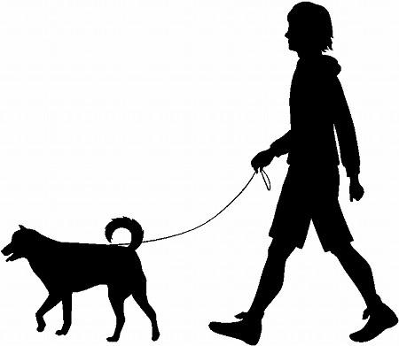 Silhouette Girl Walking Dog